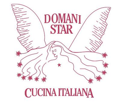 Domani Star Logo